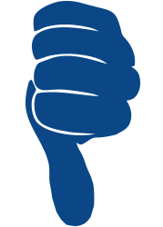 Not Great Review